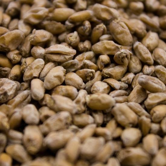 Picture of Crisp Wheat Malt 1 lb