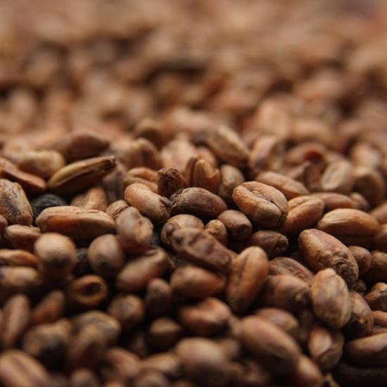 Picture of Weyermann® CARAWHEAT® 1 lb