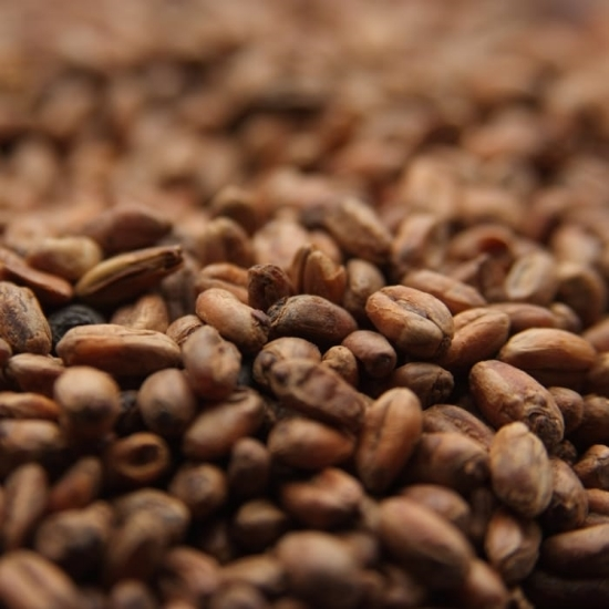 Picture of Weyermann® CARAWHEAT® 10 lb