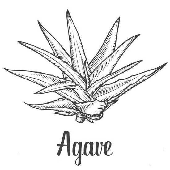 Picture of Premium Agave Syrup - 25 kg