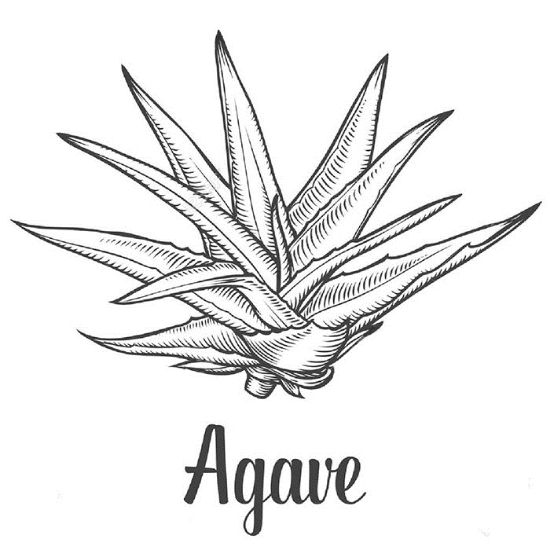 Picture of Premium Agave Syrup - 1380 kg