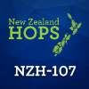 Picture of NZH-107 (NZ) Hops 500g